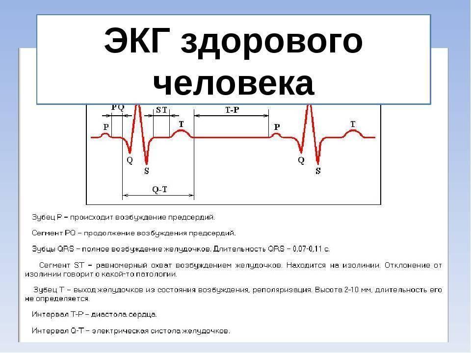 Чем отличается экг от эхокг? когда надо делать узи сердца?