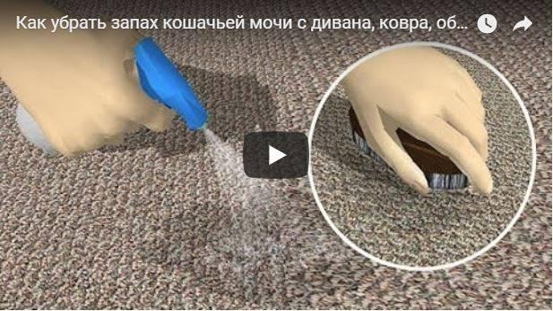 Как постирать диван от детской мочи: эффективные народные методы