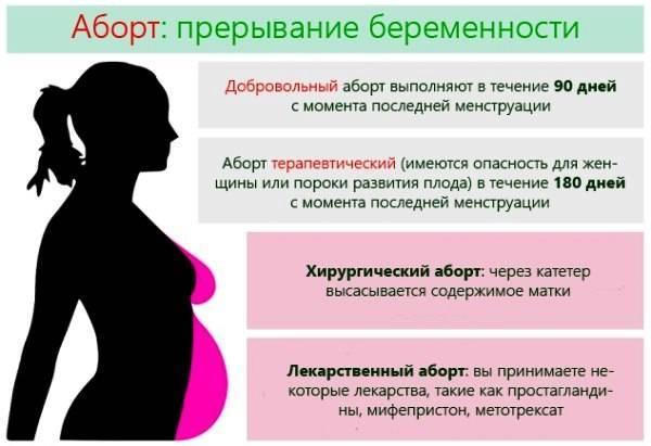 1 триместр беременности: признаки, анализы, токсикоз, что можно и что нельзя