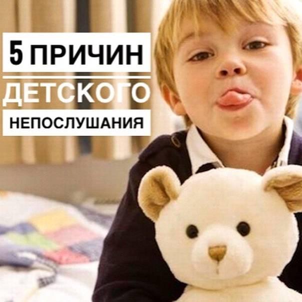 Что делать, если ребенок не слушается? непослушный ребенок 2-7 лет: советы, причины