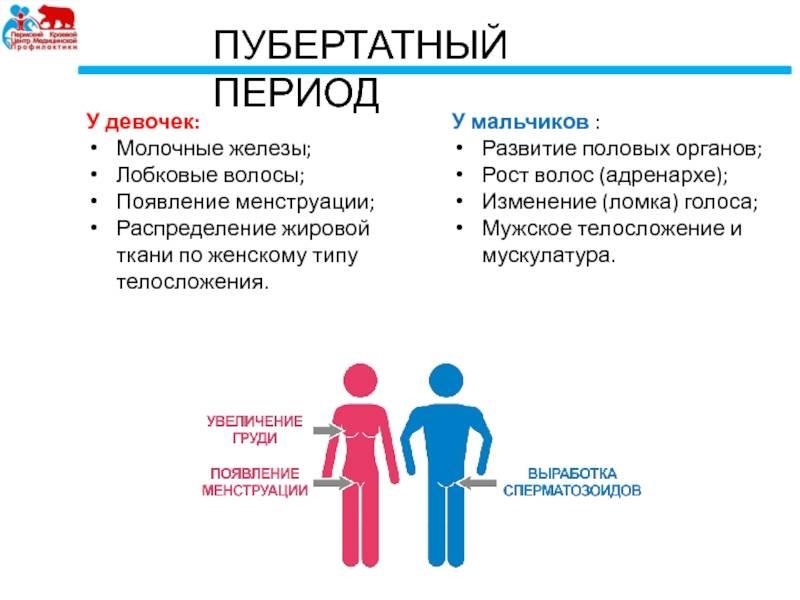 Задержка полового развития у девочек - симптомы болезни, профилактика и лечение задержки полового развития у девочек, причины заболевания и его диагностика на eurolab