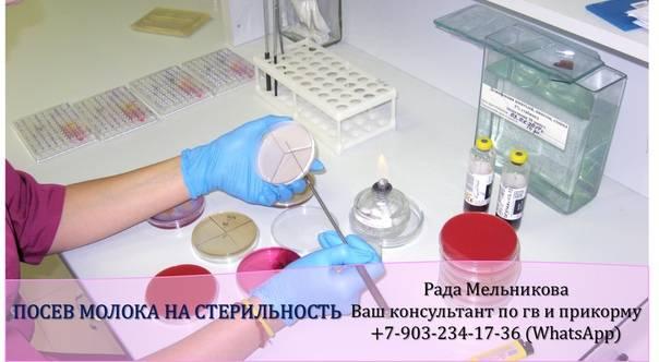 Анализ крови, мочи и грудного молока на стерильность | компетентно о здоровье на ilive