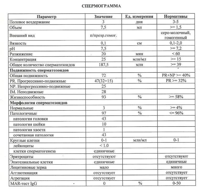 Расшифровка спермограммы: показатели нормы и отклонений