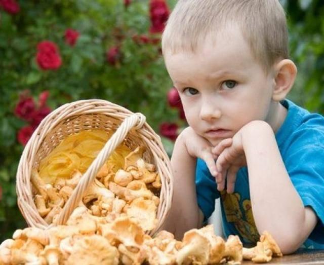 Грибы при беременности: есть или не есть?   отравление грибами при беременности   компетентно о здоровье на ilive