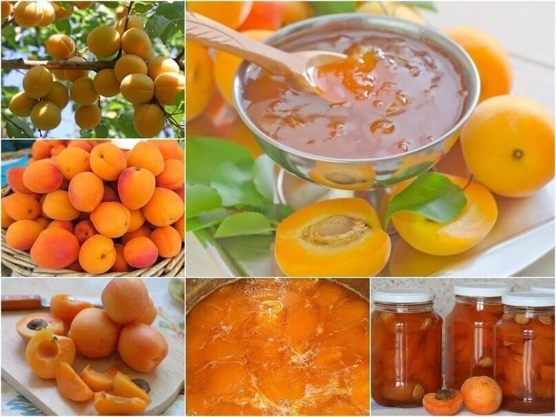Мед, варенье, выпечка и другие сладости при грудном вскармливании