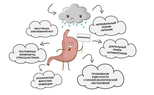 Сыпь при дисбактериозе: причины и симптомы у детей и взрослых. бифилакт биота