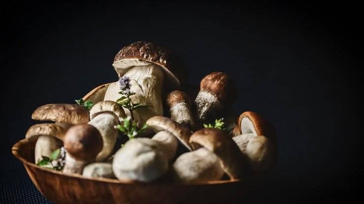 Можно ли грибной суп ребенку 2 года. грибной суп детям. грибы в детском рационе: за и против