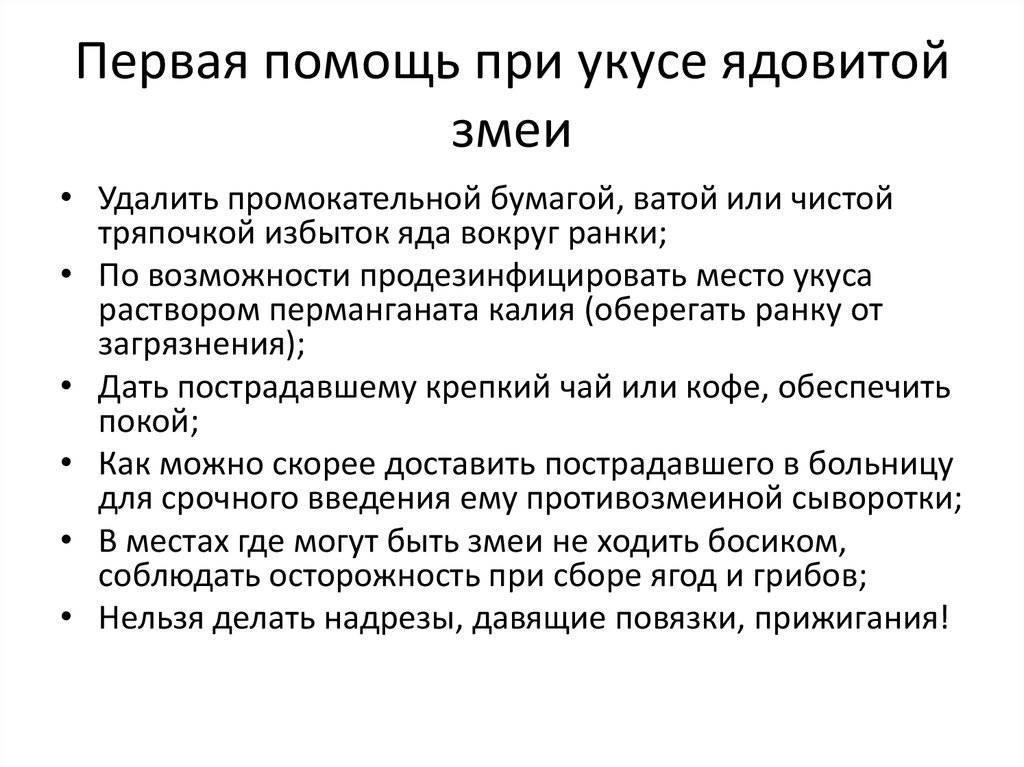 ✅ ребенка укусила змея: 4 этапа оказания первой помощи - ik-rt.ru