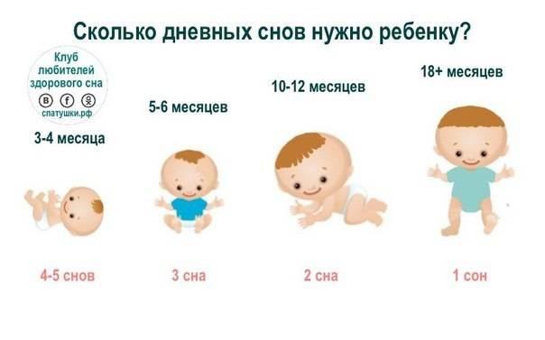 Развитие в период младенчества с 3 месяцев до 1 года