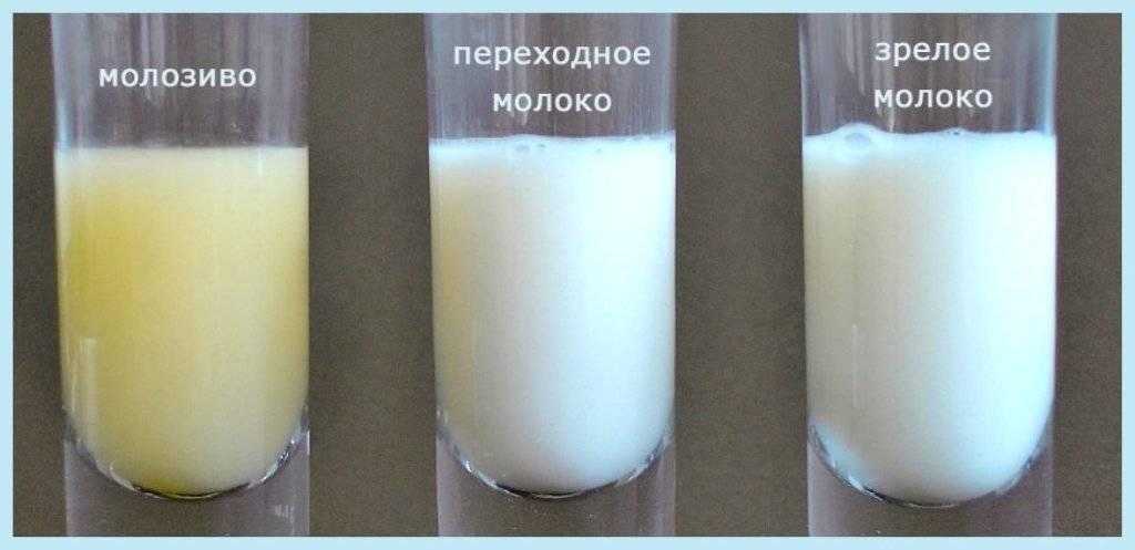 Когда приходит молоко после родов, возможные проблемы