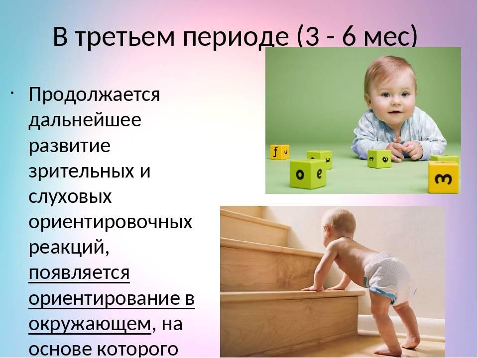 Умения и навыки ребенка в 6 месяцев, или что должен уметь делать кроха
