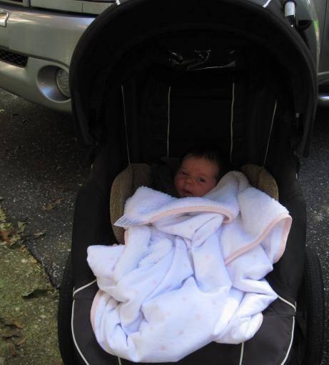 Прогулка с новорожденным: советы и рекомендации пидеатров