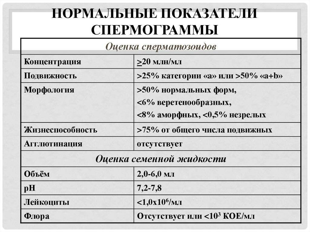 Подготовка к спермограмме | андро-гинекологическая клиника, ооо.