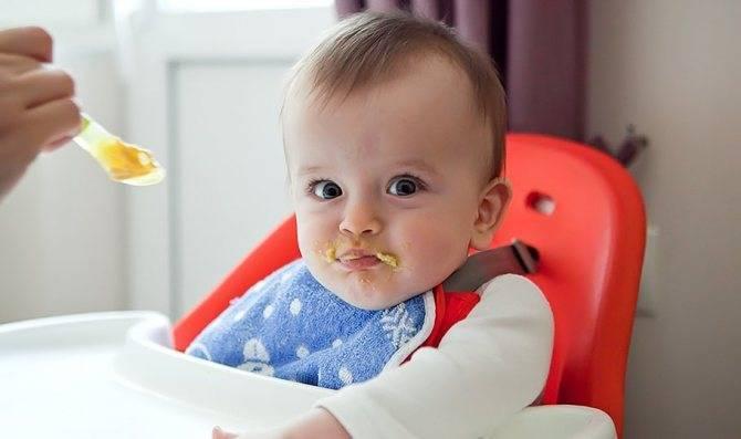 Советы комаровского: как правильно ввести овощи, каши и мясо в ситуации, когда ребёнок не хочет есть прикорм
