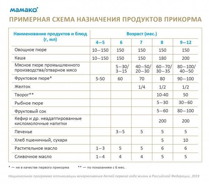 Таблица кормления детей до года по месяцам, режим - всё, что важно знать...