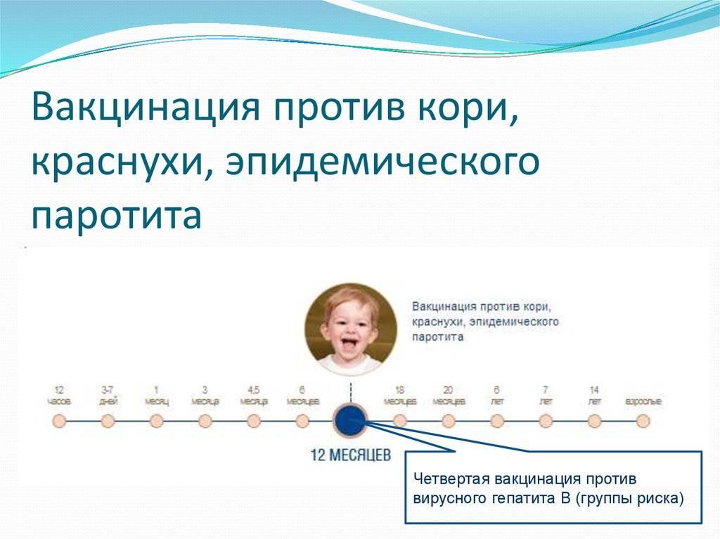 Корь, краснуха, дифтерия… почему родители отказываются от вакцинации детей?   здоровье   аиф красноярск