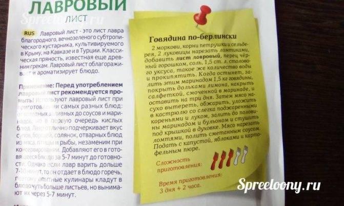 Острый цистит: каковы его симптомы и как их лечить * клиника диана в санкт-петербурге