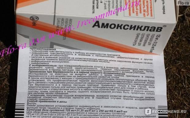 Суспензия для детей Амоксиклав: инструкция по применению
