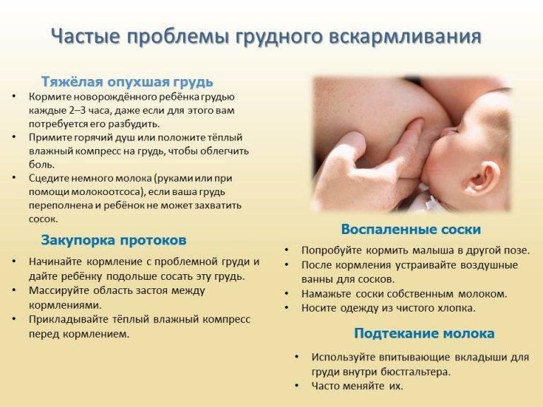 Нужно ли давать воду новорожденному при грудном вскармливании