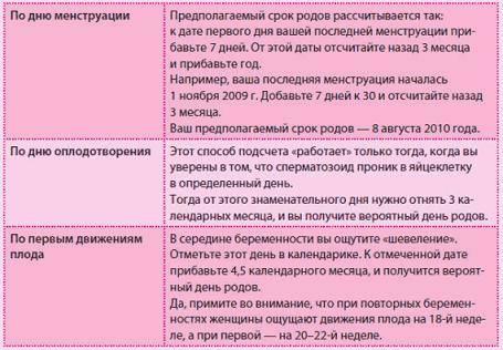 """Ложная беременность у собак: причины, признаки и способы избавления   блог ветклиники """"беланта"""""""