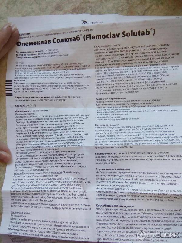 Флемоклав солютаб: инструкция по применению