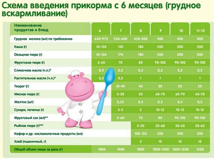 Первый прикорм новорожденного: как вводить, таблица прикорма по месяцам