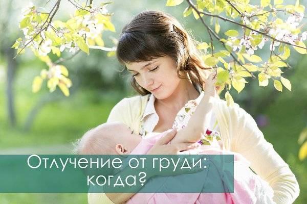 Бремя отлучения. как долго кормить ребенка грудью. . отлучение от груди
