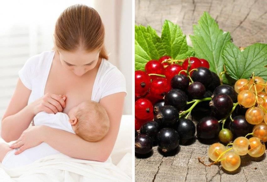 Можно ли кормящей маме есть баклажаны: особенности рациона и рецепты при грудном вскармливании