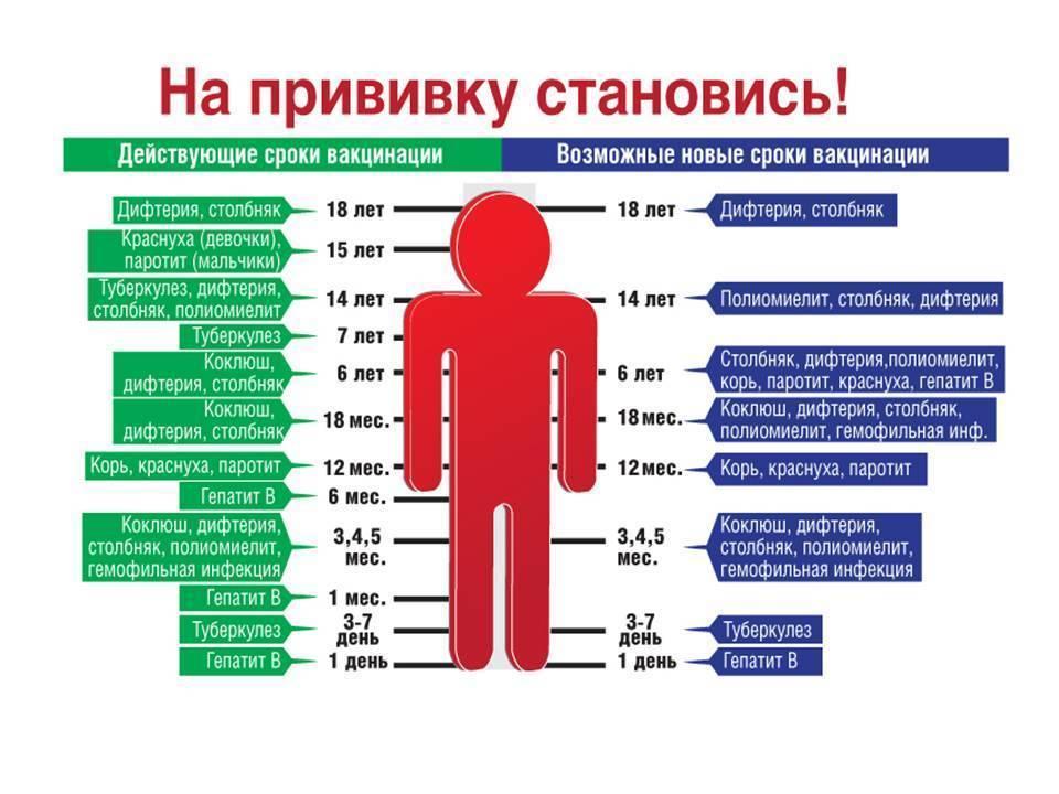 Прививка против дифтерии и столбняка для детей и взрослых