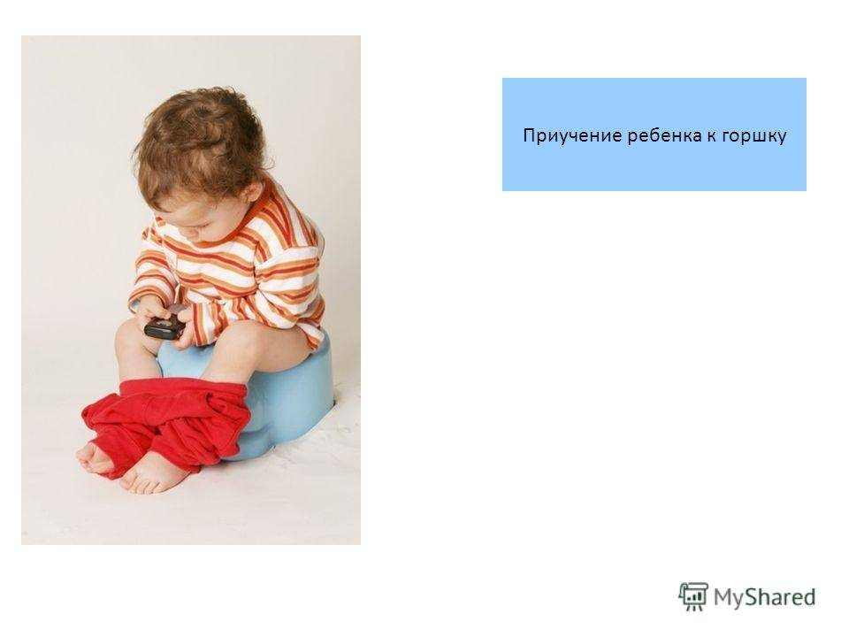 Как приучить ребенка к горшку? просто вовремя снимите подгузник. приучить ребенка к приучение к горшку по комаровскому
