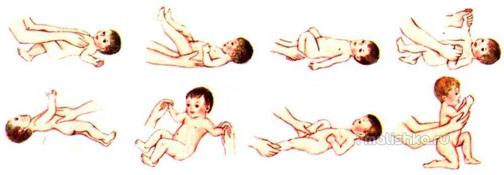 Читать книгу обучение моторным навыкам детей с дцп. пособие для родителей и профессионалов зиглинды мартин : онлайн чтение - страница 8