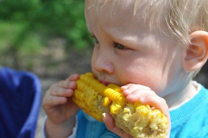 С какого возраста можно предлагать ребенку кукурузу?  - еда и кулинария - вопросы и ответы