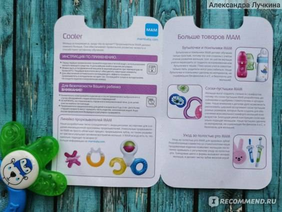 Сроки и порядок прорезывания молочных зубов у детей – схема, график
