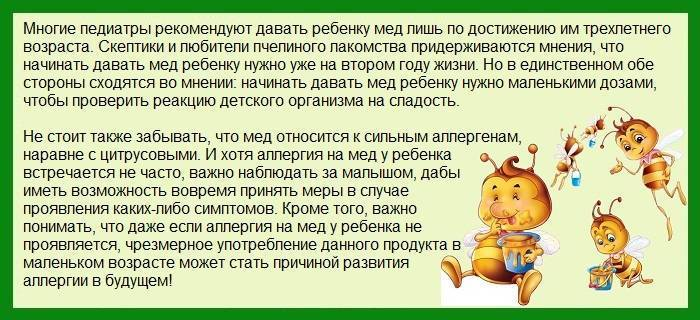 С какого возраста можно давать ребенку мед