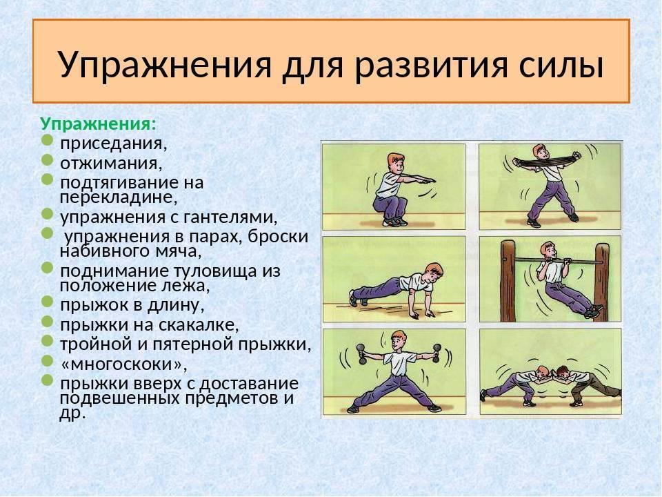Как укрепить мышцы рук и спины у грудничка: тренировки для детей в 4, 5, 6 и 7 месяцев