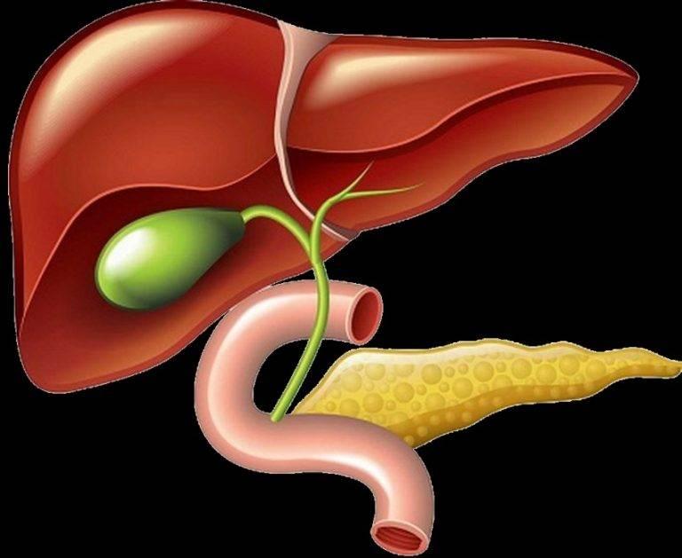 Острый калькулезный холецистит: симптомы, лечение