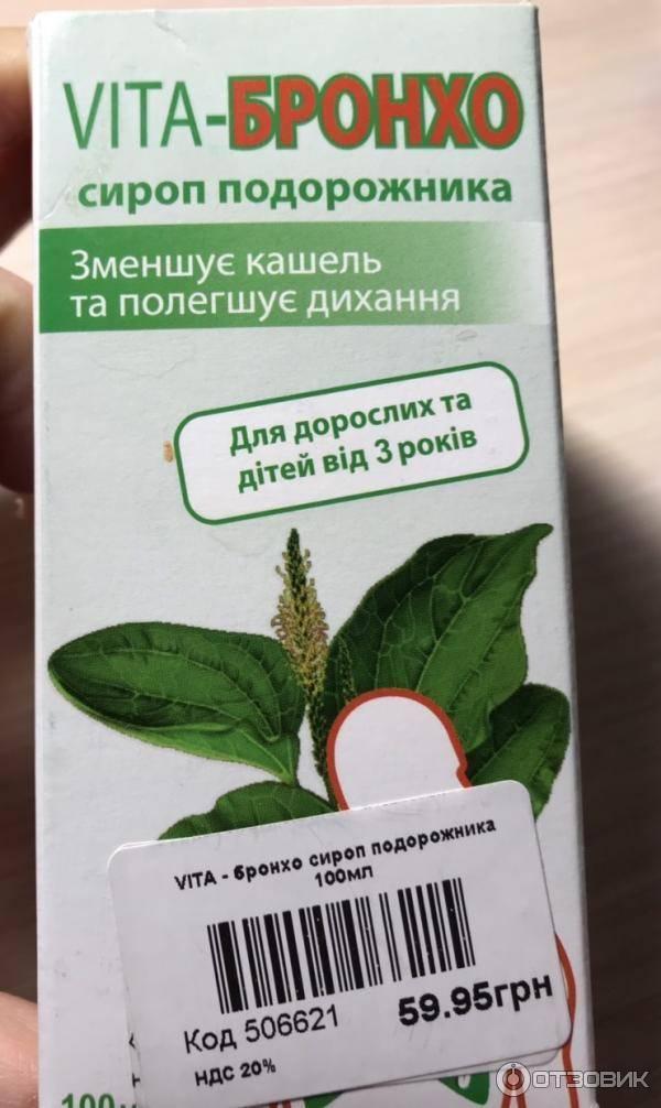 Подорожник-трава: любимое «лекарство» из детства