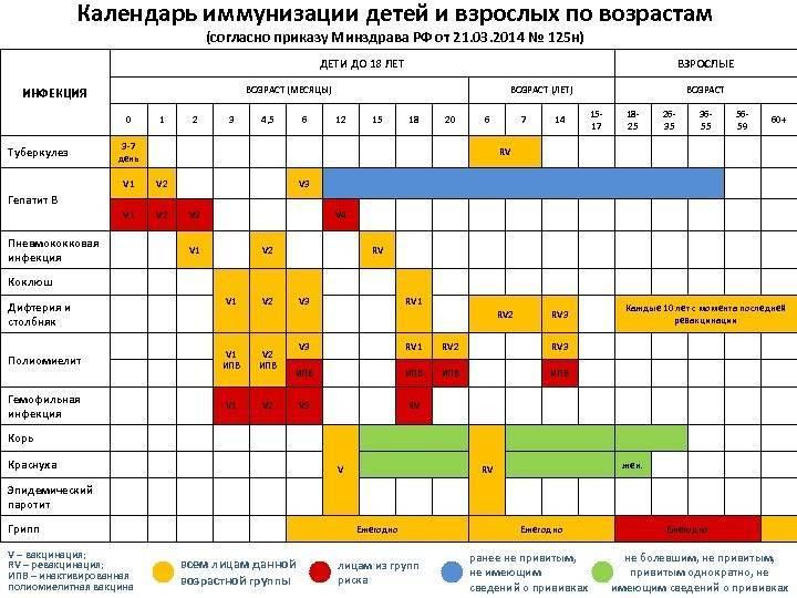 Календарь прививок детям до 1 года (в России). Что нужно знать мамам