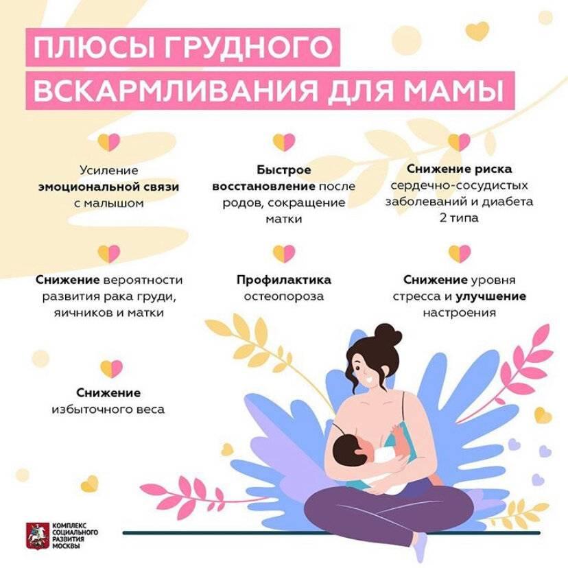 Ночное кормление грудью | консультант коуч-icta по грудному вскармливанию в минске 8(029)661-60-56