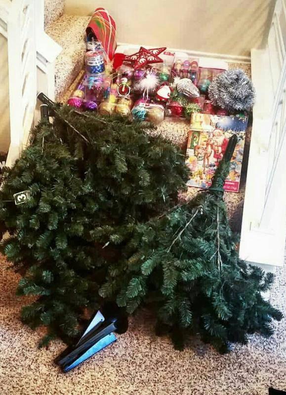 Когда нужно убирать елку и что будет, если не успеть сделать это до крещения – новости барановичей, бреста, беларуси, мира. intex-press