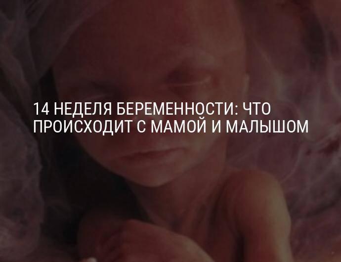 38 неделя беременности / календарь беременности