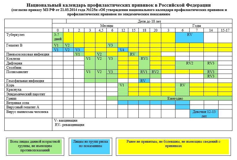 Календарь прививок для взрослых | onni