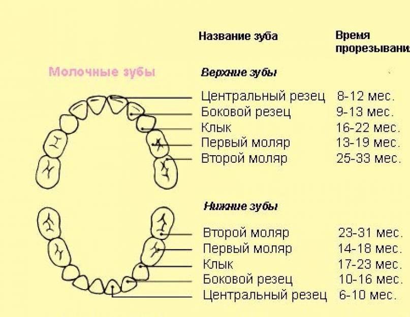 Кариес у детей: лечение, кариес молочных зубов, фото, симптомы, диагностика