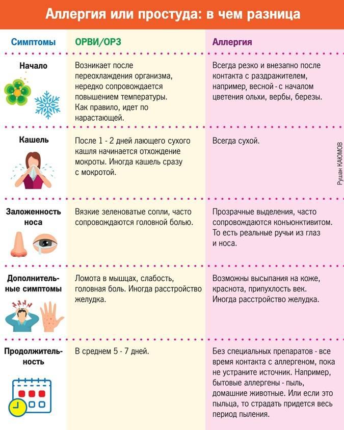 Симптомы и лечение аллергического бронхита у взрослых   медицинский центр «президент-мед»
