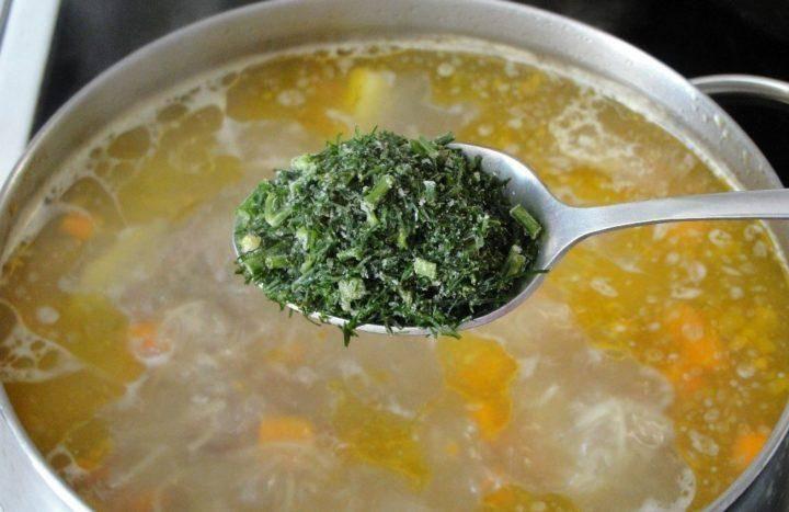 Когда можно давать суп грудничку: рецепты и разновидности