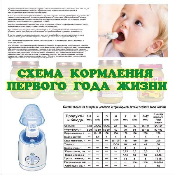 Как часто нужно и можно кормить новорожденного грудным молоком