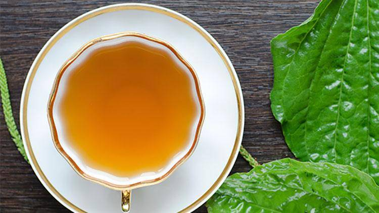 Какао с медом от кашля: рецепты   компетентно о здоровье на ilive
