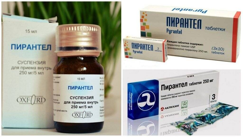 Лекарство от остриц для детей и взрослых