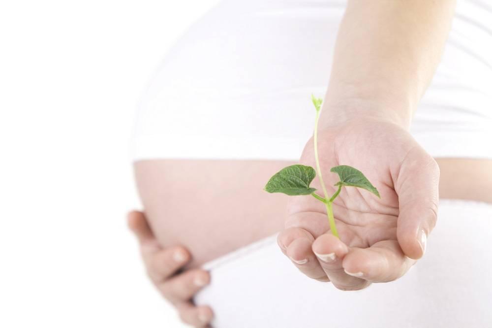 Стимуляция родов: 5 способов. введение препаратов или секс? естественная стимуляция родов и медикаментозная