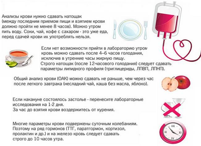 Кровь из пальца сдают натощак или нет: можно ли кушать перед сдачей, пить воду   hk-krasnodar.ru